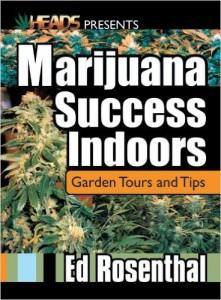 Marijuana Success Indoors