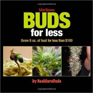 Bud's for Less
